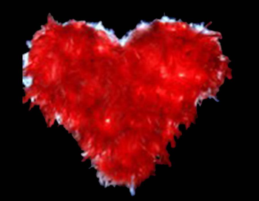 Sevgililer Günü Işıklı Süslemeleri