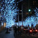Ağaç Işıklandırma