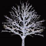 Işıklı Ağaç İmalatı