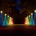 Işık Süsleme, AĞAÇ IŞIK SÜSLEME, Işıklı çam Ağacı Süslemeleri, Işıklı Çam Ağaç, Led Işıklı Çam Ağaç Yapımı,