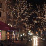 Işık Süsleme, Cadde Led Işık Ağaç Süslemesi, Nişan Taşı Cadde Ağaç Süslemesi, Yılbaşı Led Işık Süsleme Firması,